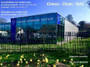Clinique Vétérinaire Pasteur Dreux(28 100) près de Vernouillet (28500), Houdan (78550), Anet (28260), Nogent-le-Roi (28210)